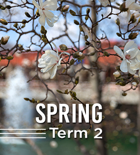 First Day of Spring Term 2